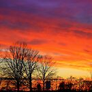 Autumn Sky by Grinch/R. Pross