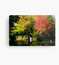 Roger Williams Park in the Fall Metal Print