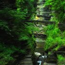Ithaca's Treman State Park by PJS15204