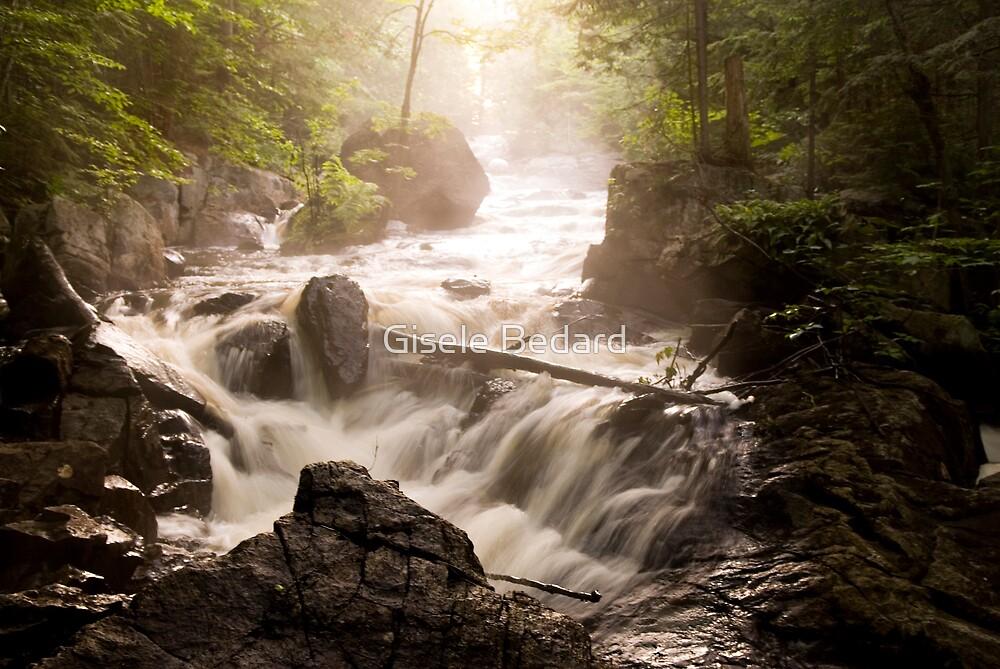 The River by Gisele Bedard