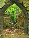 Through the Window by trish725