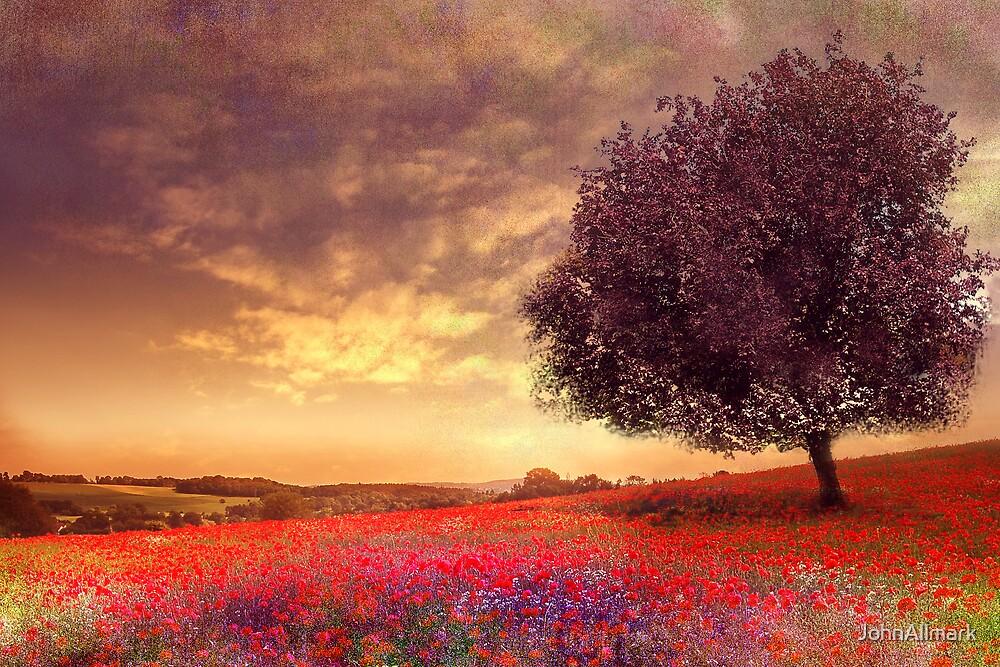 Speak Softly Love... by JohnAllmark