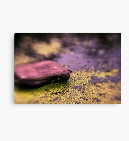 Upper Water Pond Canvas Print
