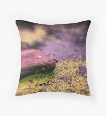 Upper Water Pond Throw Pillow