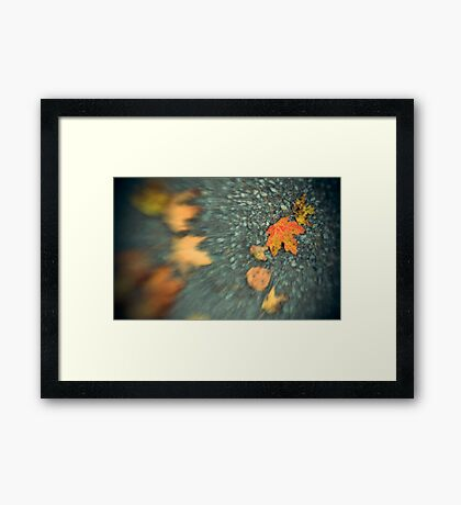 (Early) Autumn Leaves Framed Print