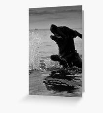 Just swimming Greeting Card