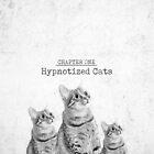 Hypnotized Cats by Dellan-ArtPhoto