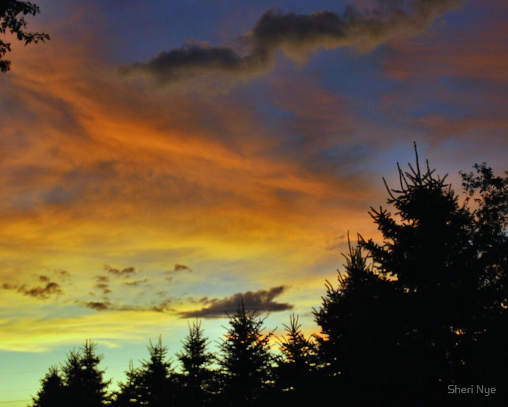 Fading Sunset by Sheri Nye