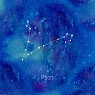 Constellation Pisces by ShaMiLaB