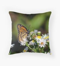 092209-167 Throw Pillow