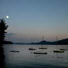 Moonrise Over Newfound Lake by Wayne King