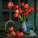 Red tulips by danapace