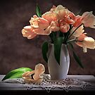 pink tulips by dagmar luhring