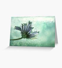 Submerged Greeting Card