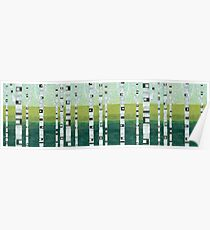 Birches at the Beach Poster