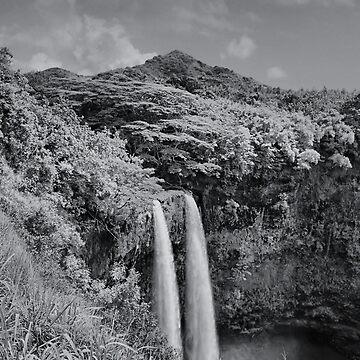 Wailua Falls Kauai in BnW by djphoto