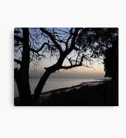 Dawn at Burrum Canvas Print