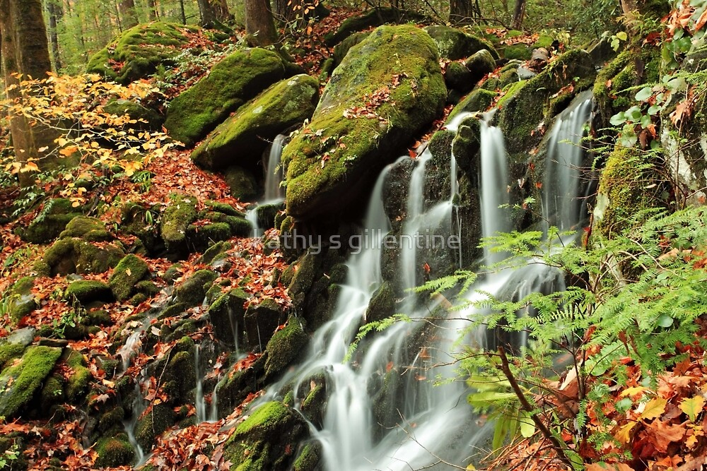 the little cascade by kathy s gillentine