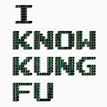Kung Fu by BenVenom