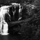 Bald Falls 2 by kathy s gillentine