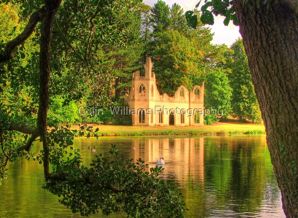 Painshill Park, Swan and Abbey Ruins - HDR by Colin  Williams Photography
