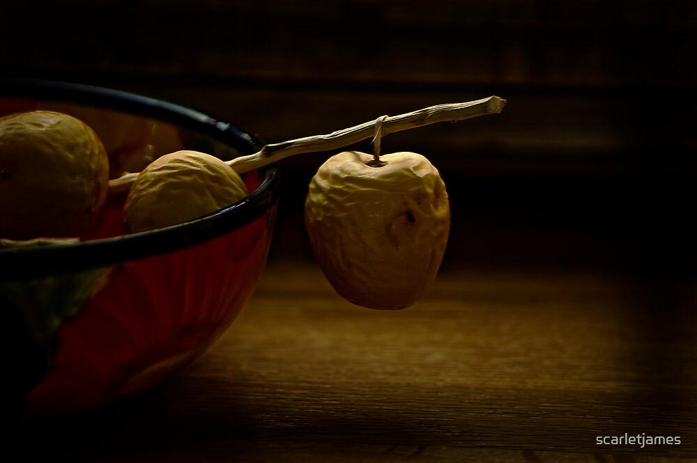 Dates in a Bowl  by scarletjames