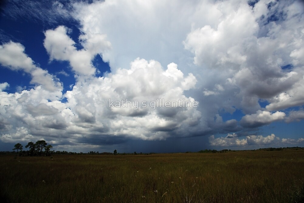 storm rolling in by kathy s gillentine