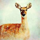Young Deer by Leon Woods