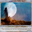 The Dream Traveler - May card by Aimee Stewart