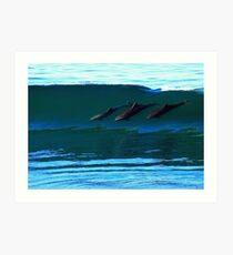 Bottlenose Dolphins Surfing Art Print