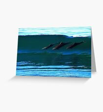 Bottlenose Dolphins Surfing Greeting Card