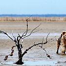 SPIKKELS AND MYSELF ON OUR WAY TO THE BEACH von Magriet Meintjes