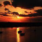 Sunrise over San Carlos Island by kathy s gillentine
