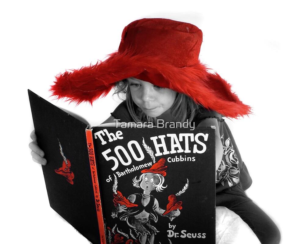 500 Hats by Tamara Brandy
