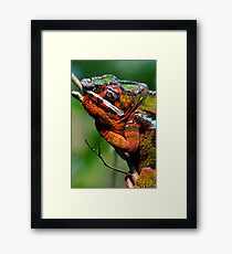 MR. RIGHT Framed Print