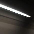 Flash of Light by Carolyn Perrick