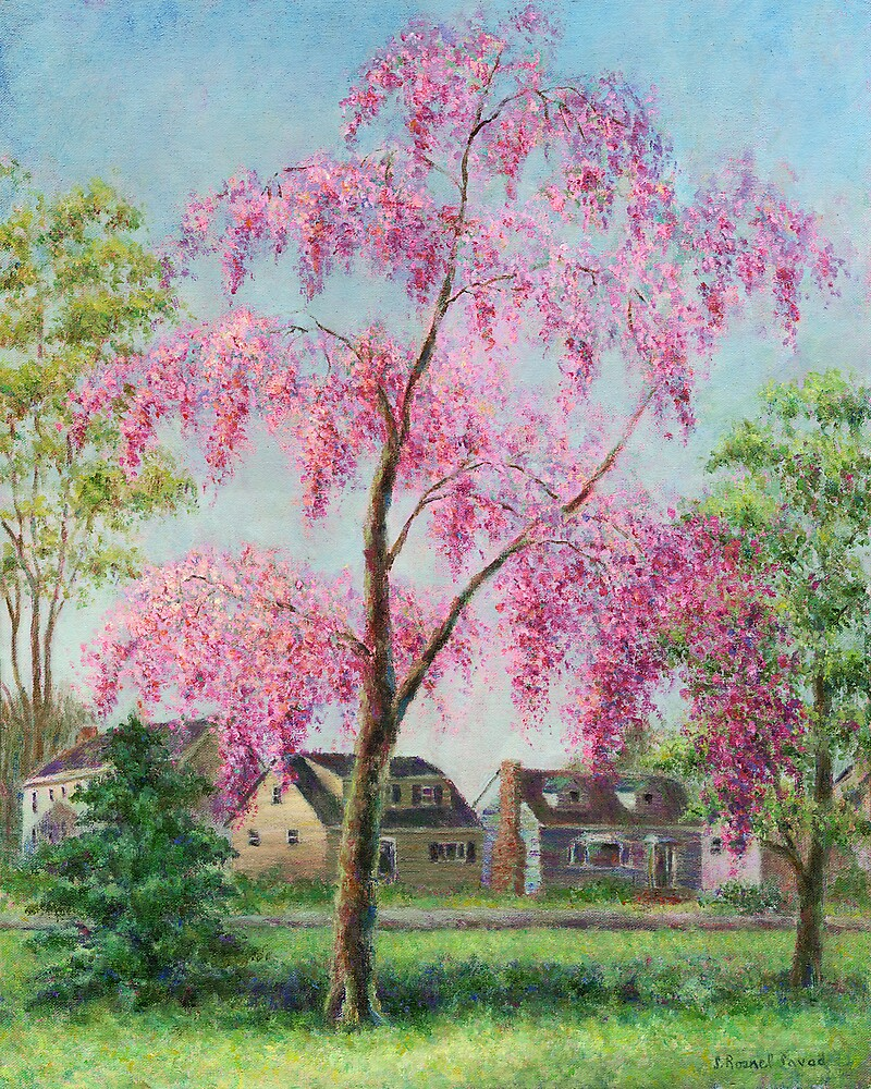 Weeping Cherry by Susan Savad