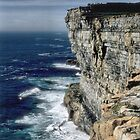 The Cliffs of Inishmore by Larry Davis