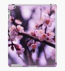 Sakura (4) iPad Case/Skin