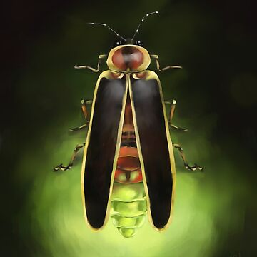 Lightning Bug Painting - Indiana State Bug - Firefly by Ela Steel by elasteel