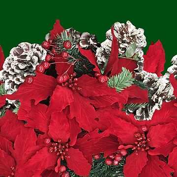 Christmas Poinsettia and Pine Cones by Gravityx9