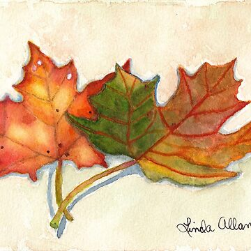 Maple Leaves Watercolor Print by Lallinda