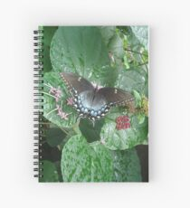 That September in the Rain Spiral Notebook