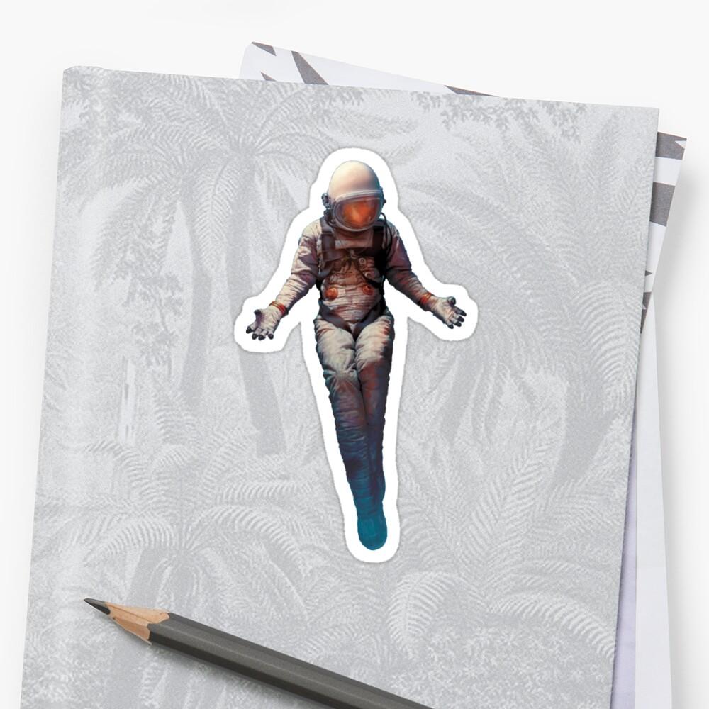 Snow Patrol - Wildness Sticker