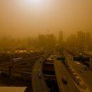 Sydney Dust by Dene Wessling