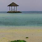 Pandora island by chrispua