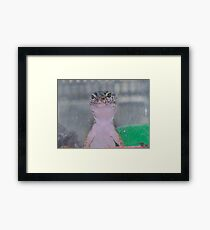 Please sir can I have some more ................................ Framed Print