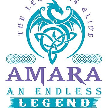 Legend T-shirt - Legend Shirt - Legend Tee - AMARA An Endless Legend by wantneedlove