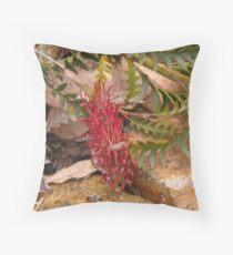 Proteaceae - Grevillea Boongala Spinebill Throw Pillow