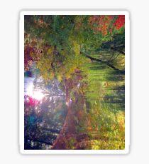 willow pond Sticker